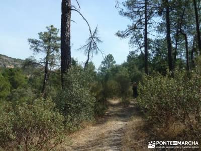 Cañones del Río Cega y  Santa Águeda  – Pedraza;nacimiento rio manzanares grupos de senderismo